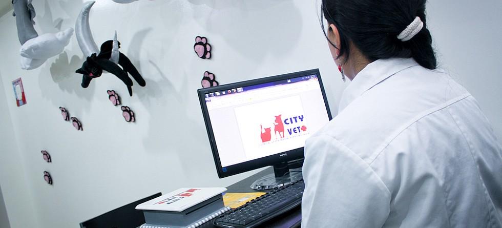 Cityvet1